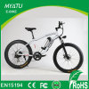 Manufacturer 1000W 48V Fat Tire Mountain Electric Bikes