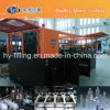 Linear Type Blow Molding Machine
