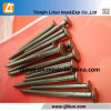 Manufacturer Q195 Polished Common Wire Nails Common Nails