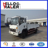 Sinotruk 4X2 Small Cargo Truck with AC