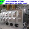 Biomass Fired Hot Water Boiler/Boiler (DZG4)