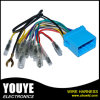 Automotive Car Radio Wiring Harness