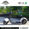 Popular City 2 Wheel Electric Scooter City Coco (JY-ES005)