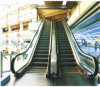 Shopping Mall Escalator Indoor Escalator Speed 0.5m/S Capacity 9000kg