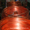 Best Quality Copper Tube (C10200) /Copper Pipe (C12000)