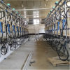 Hl-G2 Dairy Farm Cow Milking Machines