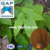 Manufacturer Supply Natural Icariin with Free Sample