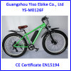 1000W Fat Tire Mountain Bike with Electric Bike Bottle Battery 36V