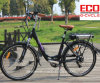 City Bike for Lady and Lithium Battery Electric Bicycle