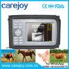Veterinary Ultrasound Machine Animal Vet Diagnosis Medical Equipment -Candice