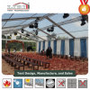 Tranditional 20X25m Big Marquee Tent for Temporary Function