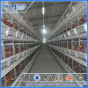 Poultry Farm Layer Chicken Cage with Hot Galvanization