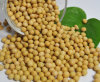 Non-Gmo High Protein Soybeans for Sale