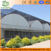 Agriculture Multi Span Film Greenhouse for Sale with Factory Price