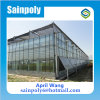 Easilly Installed Glass Multi-Span Tomato Greenhouse