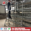 Automatic Layer Cage for Hot Sale