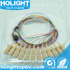 12 Strand MPO/MTP to Sc Fiber Patch Cable