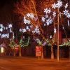 LED 2D Hanging Snowflake Light Sculptures Avenue Street Pole Decoration
