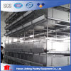 H Type Automatic Poultry Chicken Feed Equipment Cage