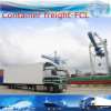 Sea Transportation as Door to Door Service Forwarder to Miami