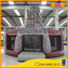 Rock Climb Wall Inflatable Climbing Tower Sport Game (AQ1935)