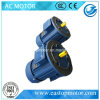 Russia Standard 3HP Motor Price for Metallurgy with Cast-Iron Housing