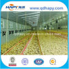 Low Cost Automatic Poultry Control Shed Equipment in Steel House