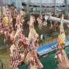 Muslim Sheep Slaughtering Machine for Goat Halal Turnkey Abattoir Plant
