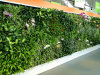 Decrative Artificial Wall Grass for Indoor and Outdoor Wall Decoration Landscaping Grass