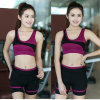 Women′s Sports Bra Custom 100% Spandex Leggings Yoga Active Wear