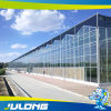 Holland Horticulture Venlo Glass Greenhouse Factory Price