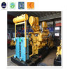 CNG, LPG, Syngas/Natural Gas/Biomass/Biogas Generator with Internal Combustion Engine