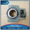 Xtsky Pillow Block Bearing (UCT211)