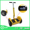 China Manufacturer Electric Motorcycle for Children