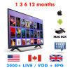 IPTV Package Eutv IPTV UK Club IPTV Lines Arabic IPTV Codes Reseller Panel Live TV Sports Epg