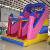 Colourful Children Inflatable Slide (SL-008)