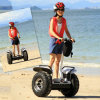 Foldable Adult Exercise Sport off Road Electric Bike