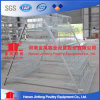 Hot Sale Automatic Chicken Cage for Poutry Farms