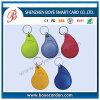 RFID Access Control Key Chain/Keyfob/Key Tag