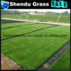 Cheap Man Glue Artificial Grass Carpet 250stitch