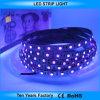 12V SMD 5050 60LEDs Purple 365nm UV LED Strip