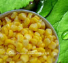 Canned Sweet Corn (184G, 227g, 340g, 425g, A10 HACCP ISO BRC)