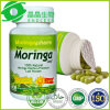 OEM 60capsules 100% Natural Capsule Moringa Powder
