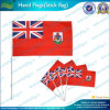 Sports Flags/Hand Flags/Printing Flags (B-NF01F02019)