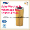 Oil Filter Auto Parts for Mercedes Benz E197HD06