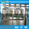 Automatic Pulp Juice Bottling Machine/Fruit Juice Filling Equipment