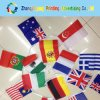 Custom Cheap Any Size Flag Digitial Printing