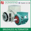 80kw 274c Double Bearing AC Brushless Power Generator Alternator