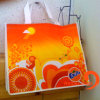 Colorful Laminated PP Non Woven Bag (HBNB-32)