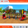 Outdoor Gym Playround Equipment Slide for Kids (HD-MZ012)